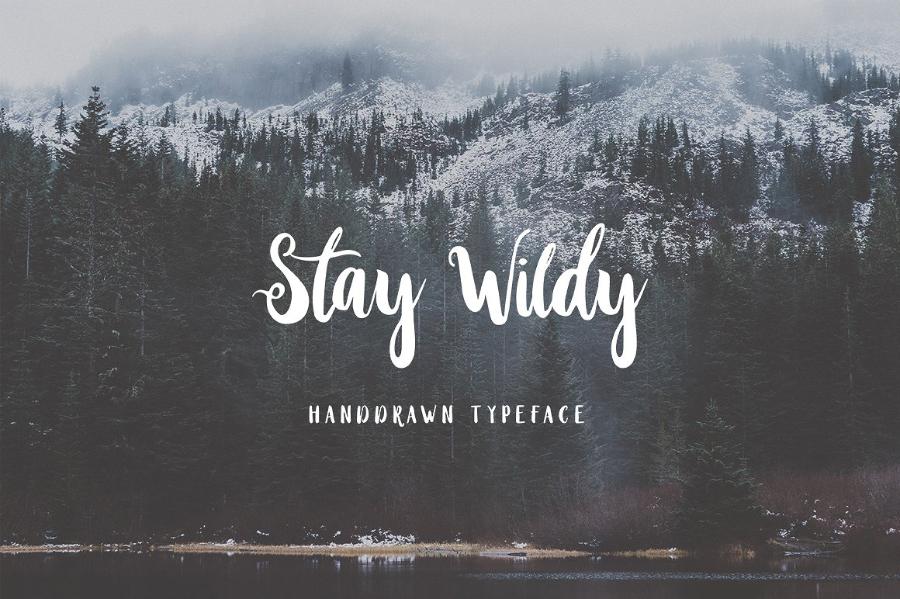 Stay Wildy Script Demo