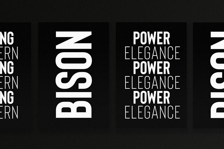 Bison Bold Free Demo Font