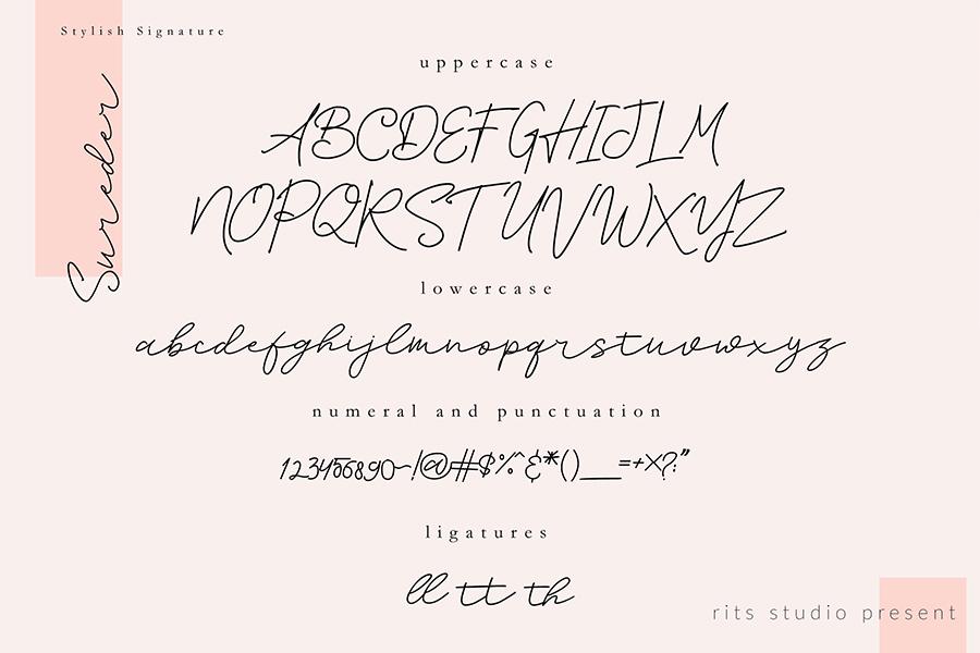 Sureder Stylish Script Demo