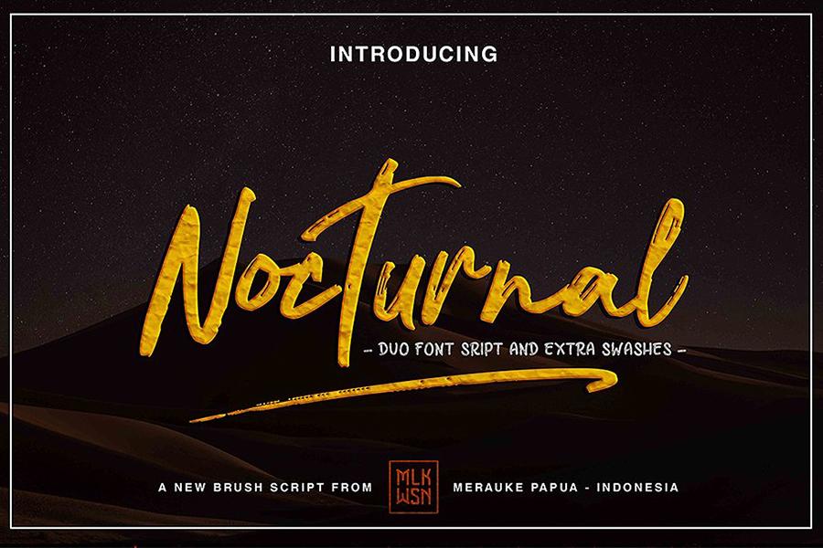 Nocturnal Script Font Demo