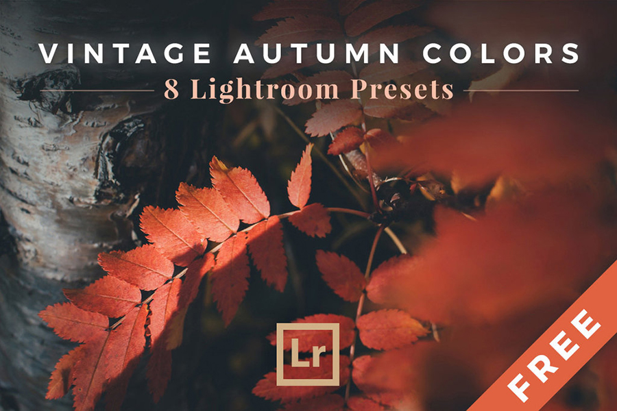 Vintage Autumn Lightroom Presets