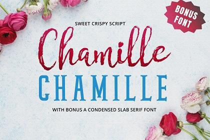 Chamille Script Font Demo
