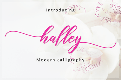 Halley Modern Calligraphy