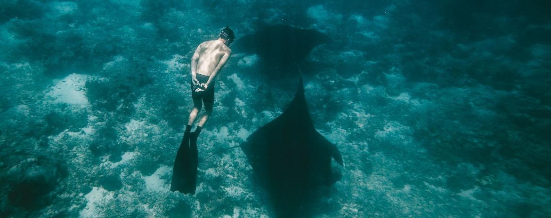 Freediving at Nusa Penida