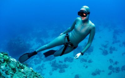 The Freedive Café - The World's Dedicated Freediving Podcast