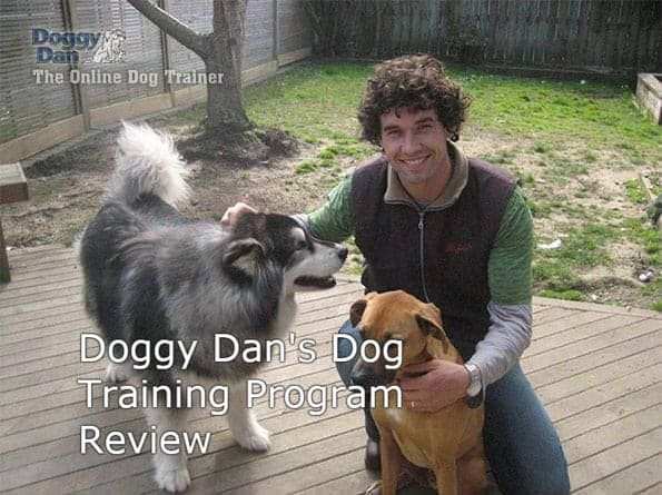 Doggy dans online dog trainer review - Doggy Dan Review 2019