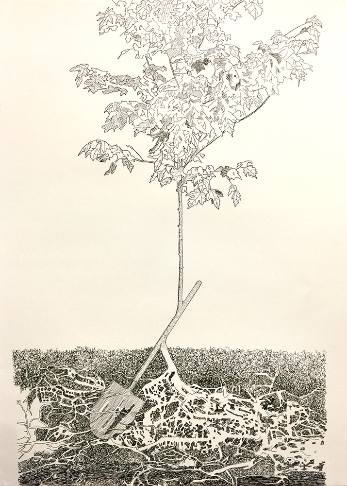 Rebisalate Shovel-Maple, 2017. Freedom Baird. Word, definition, and illustration for the Human Nature Dictionary. Archival ink and paper, 18 in x 24 in