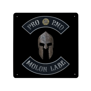 Pro 2nd Molon Labe with Spartan Helmet - Made in USA Print on Metal