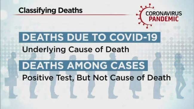 Nearly Half of COVID Deaths in Colorado County Were Not From Virus At All (VIDEO)