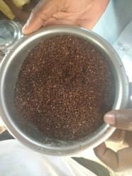 Dried sesame seeds