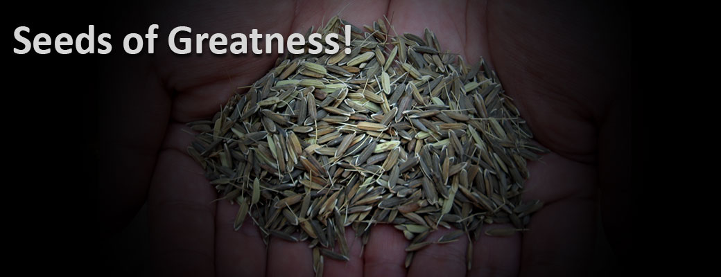 The Seeds Of Greatness