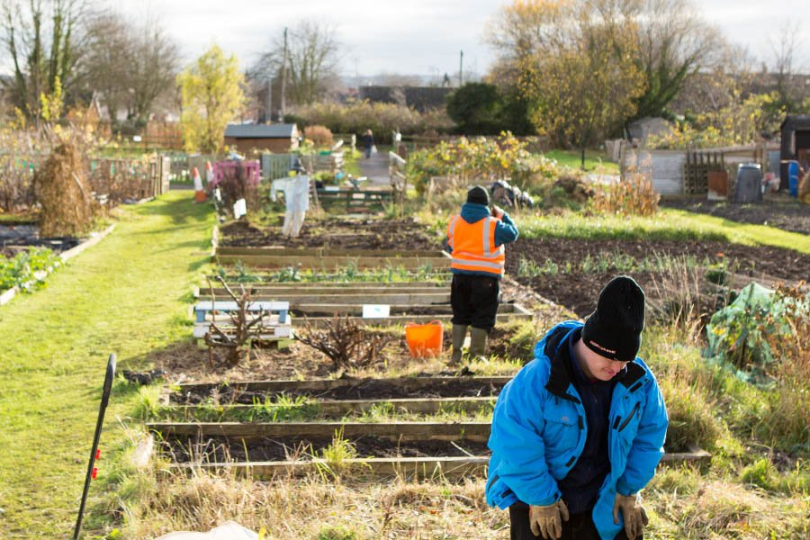 allotment freedom support