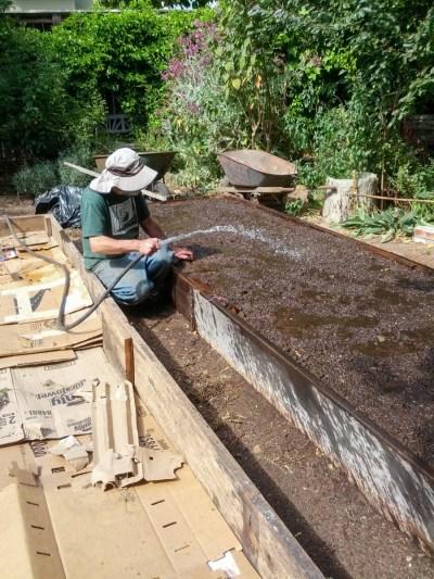 All in Common Garden - preparing beds