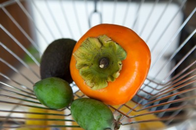 Fruits from All in Common Garden