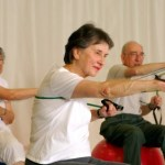 A group of elderly people in an exercise class.