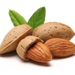 4 almonds on a white background.