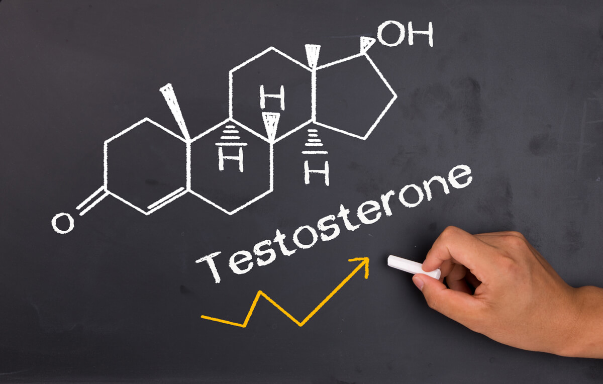 10 Great Foods To Help Boost Testosterone Levels