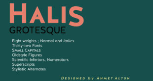 Halis Grotesque Font Free 310x165 - Halis Grotesque Font Free Download