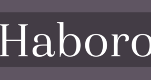 Haboror Sans Font 310x165 - Haboro Sans Font Family Free Download