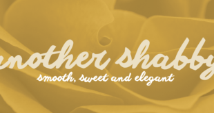 Another shabby Font Family 310x165 - Another Shabby Font Family Free Download