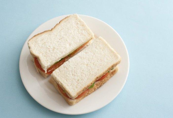 Plain White Bread Sandwich Free Stock Image