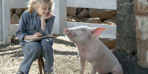 How We Teach Children a Separate Morality for Food Animals