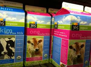 Whole Foods Market 365 brand organic milk depicts the image of a healthy, happy calf on its cover but the gulf between this facade and the reality behind it could not be greater.