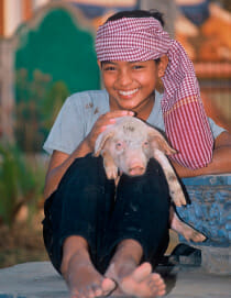 heifer international boy and piglet