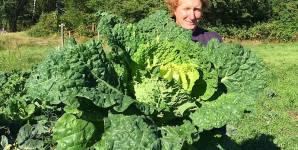 I Became a 'Humane Farmer' to Help Animals; I Should Have Gone Vegan