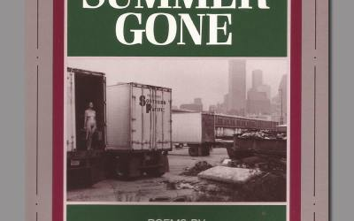"""Debbie Robson Reviews """"Days of Summer Gone"""""""