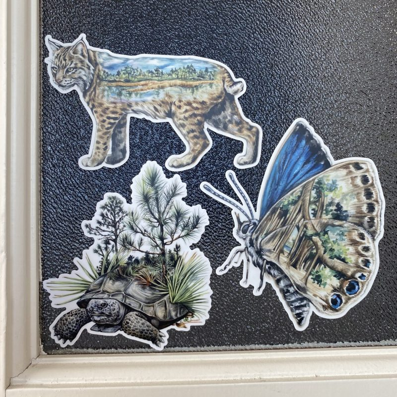 Conservation Florida Stickers
