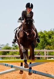 Girl jumping pony.