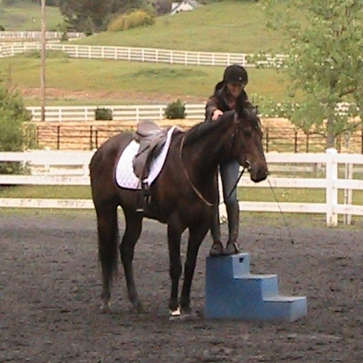 Establishing Relaxation While Mounting