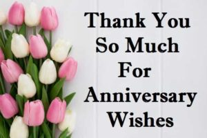 Thanks-You-For-Anniversary-Wishes-In-Hindi (2)