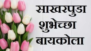 Engagement-wishes-in-marathi-for-husband-wife (2)