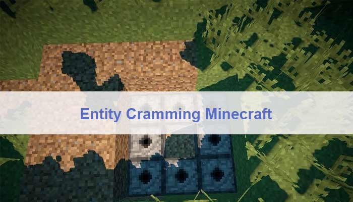 entity cramming minecraft