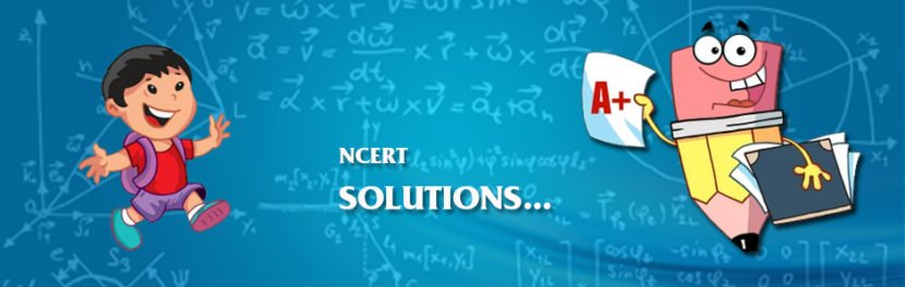 NCERT Solutions For Class 6th Maths PDF Download