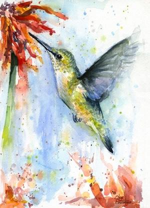 watercolor hummingbird painting flower paintings easy bird simple shvartsur olga colorful animals animal prints wall cards flowers abstract watercolors fineartamerica