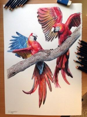 pencil drawings simple creative source