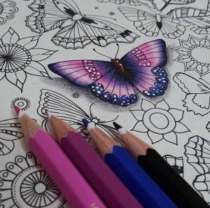 pencil drawings coloring creative simple colored pencils drawing adult books colouring blending garden techniques instagram borboletas colors tips como sombreado