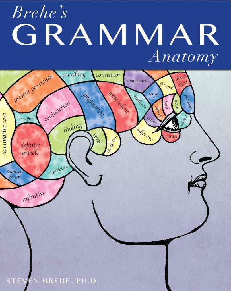 hight resolution of Brehe's Grammar Anatomy - Essential Grammar Guidance for K12 ELA   Free  Kids Books