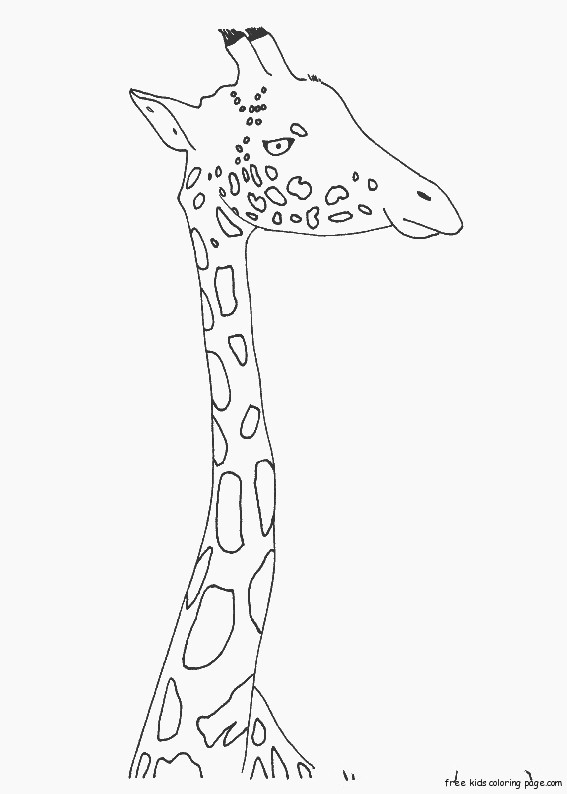 Printable Animal zarafa zoo coloring pages for kidsFree