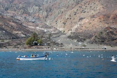 Panga off Isla Cedros