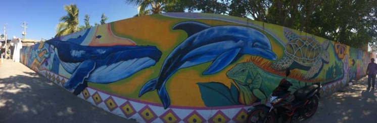 Bucerias murals
