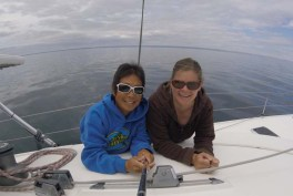 Out on a glassy sea, looking for whale sharks