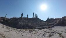 Maya sniffing out Isla Pescador