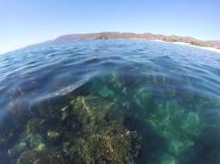 Beautiful waters of Ensenada de los Muertos