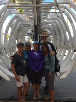 In the stomach of a whale at the Museo de la Ballena