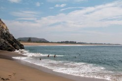 The Secret Beach swimmers