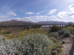 Otay Lakes, Chula Vista, CA